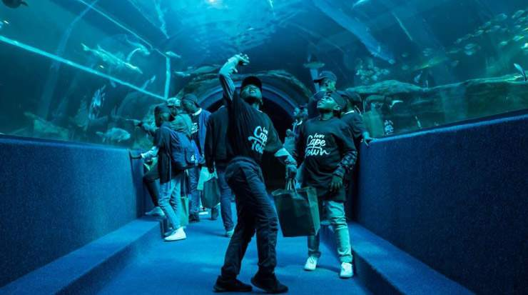 Two Oceans Aquarium – Celebrating Mandela Heritage