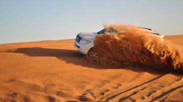 Dune Dashing by Grey Line Tours