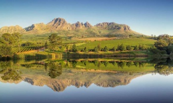 SA's Stellenbosch Wine Region Embraces Environmental Commitments