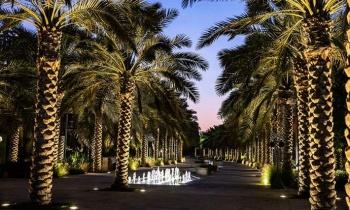 Umm Al Emarat Park Offered Teachers Complimentary Access